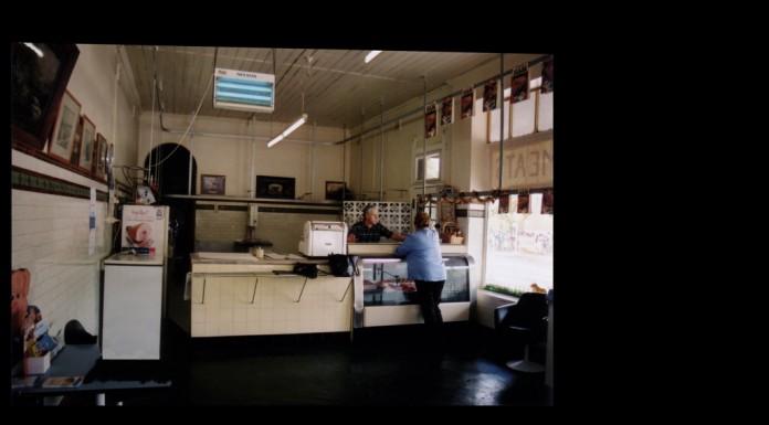 EUCALYPTUS Film  eucalyptus003