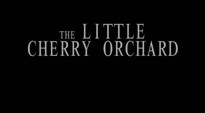 the LITTLE CHERRY ORCHARD theatre  the-little-cherry-orchard